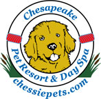 Chesapeake Pet Resort and Day Spa